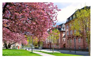 Clemensplatz in Koblenz, Foto: Willi Probstfeld