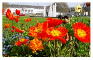 Schloss Koblenz, Foto: Evgenia Loginov