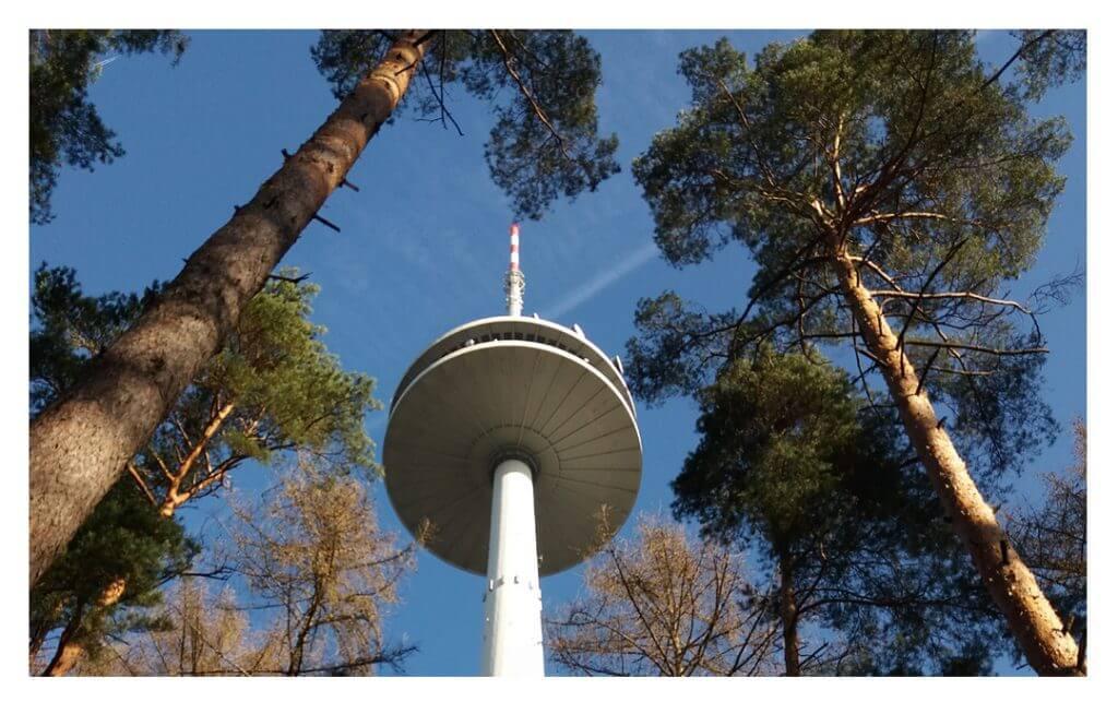 Sendeturm im Stadtwald Koblenz, Foto: Birgit Hoffmann