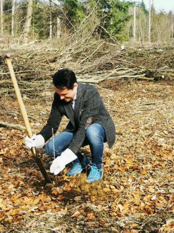 Oberbürgermeister David Langner beim Pflanzen eines Baumes.