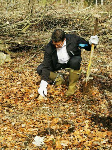 Sparkassevorstand Matthias Nester beim Pflanzen eines Baumes.