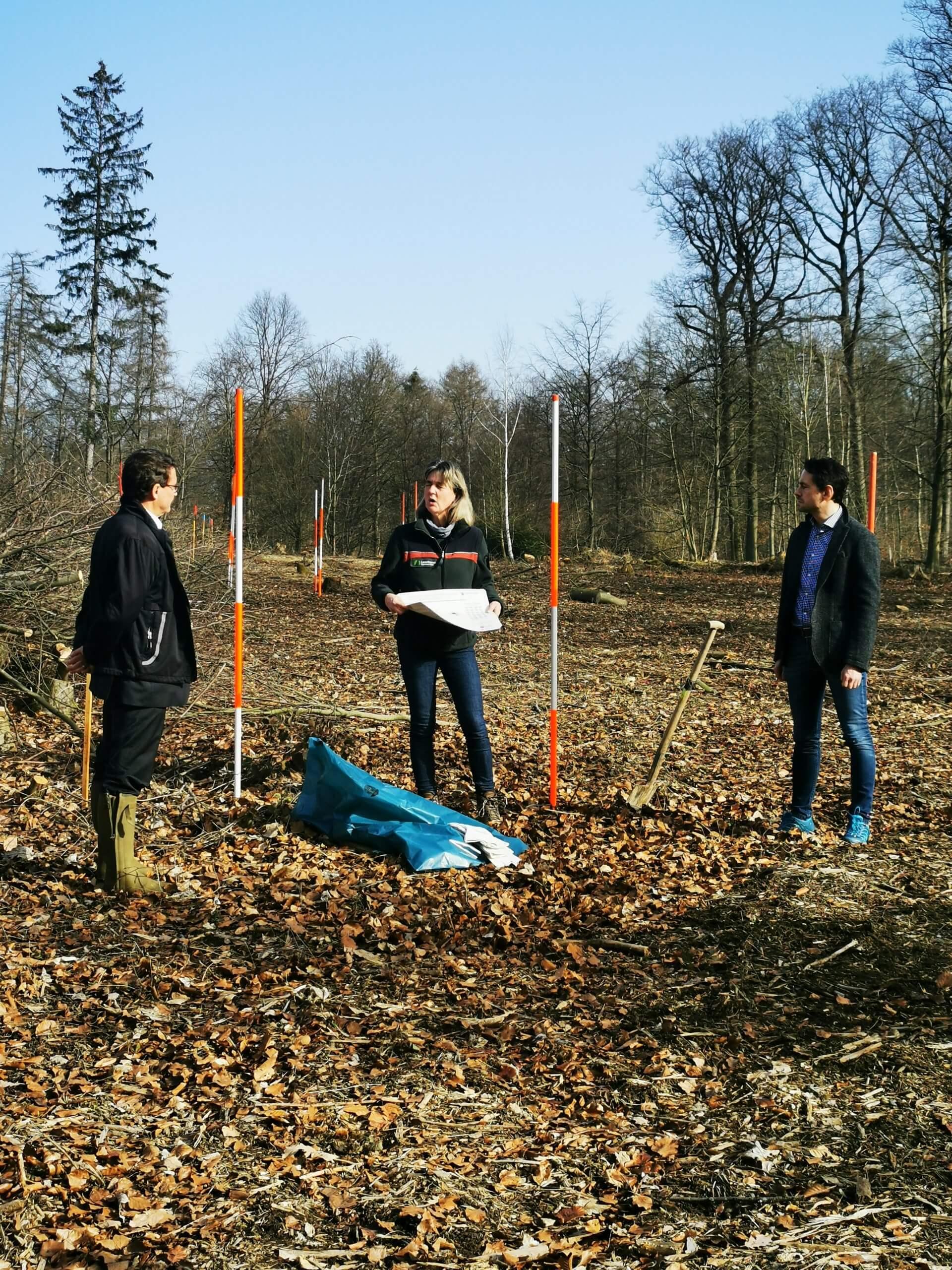Forstamtsleiterin Carmen Barth (Mitte) erklärt Vorstandsvorsitzendem der Sparkasse Matthias Nester (links) und OB David Langner (rechts), wie sich der Klimawandel auf den Stadtwald Koblenz ausgewirkt hat.